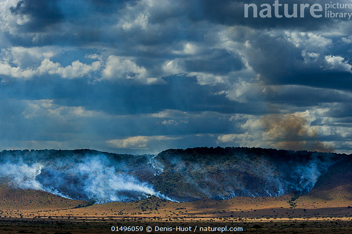 Bushfires in dry season on the Isuria escarpment, Masai-Mara Game Reserve, Kenya. October 2007.  ,  high15,,,Mystery,Mysterious,Risky,Scale,Proportion,Colour,Blue,Nobody,Dark,Darkness,Sloping,Smog,Africa,East Africa,Kenya,Natural Disaster,Forest Fire,Bushfire,Bushfires,Forest Fires,Sky,Cloud,Smoke,Landscape,Landscapes,Outdoors,Open Air,Outside,Night,Environment,Environmental Issues,Environmental Damage,Savanna,Tropical climate,Dry season,Reserve,Protected area,Expansive,Game reserve,Blue Colour,Escarpment,Carbon Emission,  ,  Denis-Huot