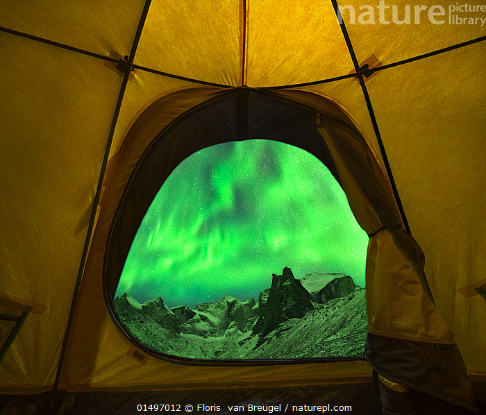 Aurora borealis / Northern Lights seen from entrance to tent, Brooks Range, Gates of the Arctic National Park, Alaska, USA, September 2014.  ,  high15,,American,Mystery,Mysterious,Colour,Green,Yellow,Nobody,Luminosity,Shape,Shapes,Swirl,Swirling,Swirls,Temperature,Cold,North America,USA,Western USA,Alaska,Interior,Tent,Mountain,Light,Lights,Sky,Snow,Aurora,Auroras,Aurora Borealis,Northern Lights,Landscape,Landscapes,Outdoors,Open Air,Outside,Night,Beautiful,Nature,Natural,Natural World,Beauty In Nature,Reserve,Phenomenon,Protected area,National Park,Wilderness,The Unknown,View Through,Green colour,Lit Up,Brooks Range,Extreme Camping,American,Yellow Colour,United States of America,Gates of the Arctic National Park,  ,  Floris  van Breugel