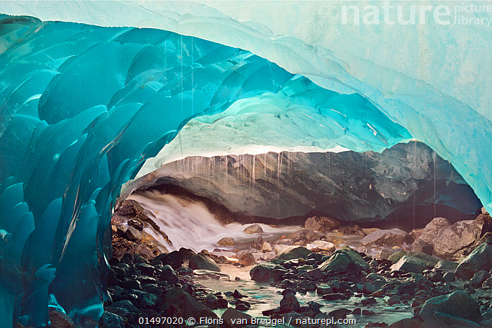 Ice cave melting in Mendenhall Glacier, Juneau, Alaska, USA, August 2014.  ,  high15,,American,Thawing,Atmospheric Mood,Atmospheric,Bizarre,Weird,Fragility,Fragile,Magic,Magical,Mystery,Mysterious,Colour,Blue,Turquoise,Aqua,Aqua Blue,Nobody,Wet,Damp,Temperature,Cold,North America,USA,Western USA,Alaska,Interior,Cave,Liquid,Liquids,Droplet,Drips,Drop,Droplets,Drops,Rock,Flowing Water,Stream,Streams,Ice,Outdoors,Open Air,Outside,Day,Beautiful,Environment,Environmental Issues,Global Warming,Greenhouse Effect,Nature,Natural,Natural World,Beauty In Nature,Freshwater,Water,Climate change,Glacial water,Hues,American,Blue Colour,Ice Cave,Mendenhall Glacier,United States of America,  ,  Floris  van Breugel