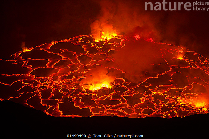 Nyiragongo volcano lava lake, Virungas National Park, Democratic Republic of Congo February 2015.  ,  catalogue7,Vicious,Burning,Anger,Threat,Menace,Menaces,Menacing,Threatening,Threats,Colour,Orange,Red,Nobody,Luminosity,Bright,Brightness,Vivid,Vividness,Pattern,Patterned,Patterns,Temperature,Hot,Africa,Central Africa,Republic of the Congo,Vertical,Fire,Craters,Rock,Lava,Smoke,Outdoors,Open Air,Outside,Night,Ferocious,Reserve,Geology,Geothermal,Protected area,National Park,Vicious,Nyiragongo  ,  Tom  Gilks