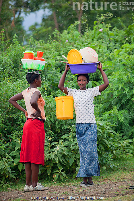 Women talking to each other whilst carrying plastic baskets on their heads, Mfangano Island, Lake Victoria, Kenya, February 2013.  ,  USING VOICE,TALKING,CHAT,CHATS,CHATTING,DIALOGUE,LANGUAGE,LANGUAGES,SPEAK,SPEAKING,SPEAKS,TALK,CARRIES,CARRY,CARRYING ON HEAD,HEAD CARRIES,HEAD CARRY,PEOPLE,FEMALE,WOMAN,AFRICA,EAST AFRICA,KENYA,VERTICAL  ,  Tom  Gilks
