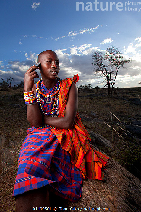 Maasai man using mobile phone, Mara region, Kenya, September 2013.  ,  PEOPLE,AFRICAN DESCENT,NATIVE AFRICAN ETHNICITY,MASAI,MASAIS,MALE,MAN,AFRICA,EAST AFRICA,KENYA,VERTICAL,WIDE ANGLE,EQUIPMENT,COMMUNICATION EQUIPMENT,COMMUNICATION DEVICE,TELECOMMUNICATION DEVICE,TELEPHONE,MOBILE PHONE,CLOTHING,TRADITIONAL CLOTHING,LANDSCAPE,LANDSCAPES,OUTDOORS,OPEN AIR,OUTSIDE,CULTURE,INDIGENOUS CULTURE,WESTERNISATION,WESTERNIZATION,DEVELOPING COUNTRIES,COMMUNICATION ISSUES,DEVELOPMENT,TRIBES,MASAAI  ,  Tom  Gilks