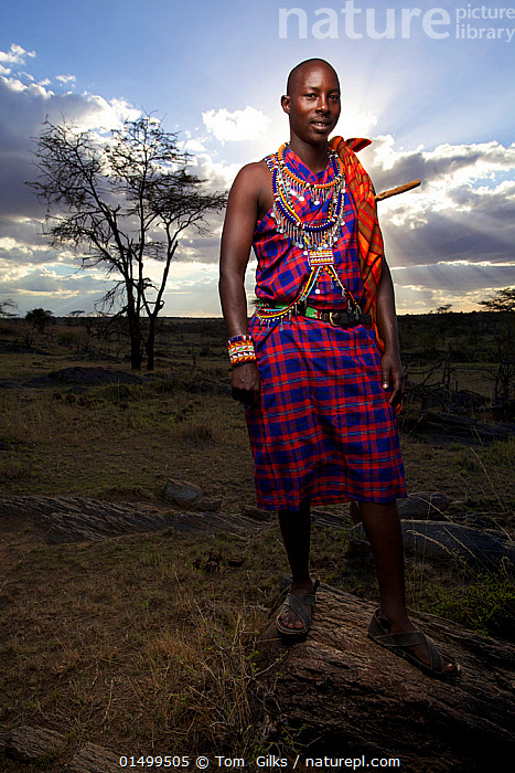 Maasai man, Mara region, Kenya, September 2013.  ,  PEOPLE,AFRICAN DESCENT,NATIVE AFRICAN ETHNICITY,MASAI,MASAIS,MALE,MAN,AFRICA,EAST AFRICA,KENYA,VERTICAL,WIDE ANGLE,CLOTHING,TRADITIONAL CLOTHING,LANDSCAPE,LANDSCAPES,OUTDOORS,OPEN AIR,OUTSIDE,MASAAI  ,  Tom  Gilks