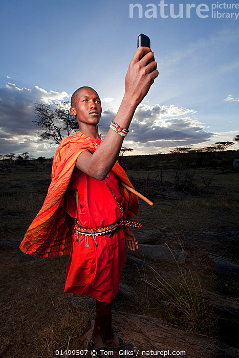 Maasai holding up mobile phone to get better reception, Mara Region, Kenya, September 2013.  ,  PEOPLE,AFRICAN DESCENT,NATIVE AFRICAN ETHNICITY,MASAI,MASAIS,MALE,MAN,AFRICA,EAST AFRICA,KENYA,VERTICAL,WIDE ANGLE,EQUIPMENT,COMMUNICATION EQUIPMENT,COMMUNICATION DEVICE,TELECOMMUNICATION DEVICE,TELEPHONE,MOBILE PHONE,CLOTHING,TRADITIONAL CLOTHING,LANDSCAPE,LANDSCAPES,OUTDOORS,OPEN AIR,OUTSIDE,CULTURE,INDIGENOUS CULTURE,WESTERNISATION,WESTERNIZATION,DEVELOPING COUNTRIES,COMMUNICATION ISSUES,DEVELOPMENT,TRIBES,MASAAI  ,  Tom  Gilks