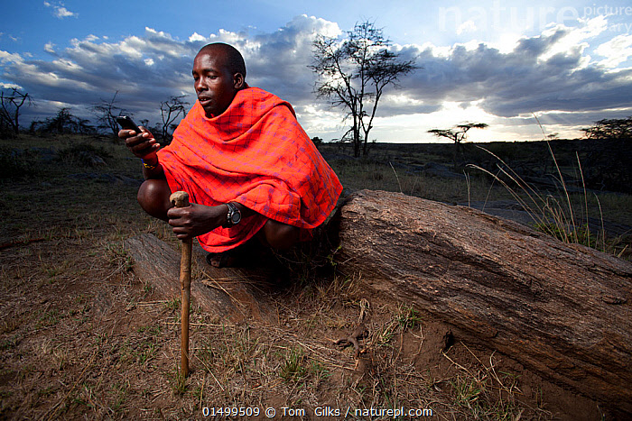Maasai man using mobile phone, Mara region, Kenya, September 2013.  ,  PEOPLE,AFRICAN DESCENT,NATIVE AFRICAN ETHNICITY,MASAI,MASAIS,MALE,MAN,AFRICA,EAST AFRICA,KENYA,WIDE ANGLE,EQUIPMENT,COMMUNICATION EQUIPMENT,COMMUNICATION DEVICE,TELECOMMUNICATION DEVICE,TELEPHONE,MOBILE PHONE,CLOTHING,TRADITIONAL CLOTHING,LANDSCAPE,LANDSCAPES,OUTDOORS,OPEN AIR,OUTSIDE,CULTURE,INDIGENOUS CULTURE,WESTERNISATION,WESTERNIZATION,DEVELOPING COUNTRIES,COMMUNICATION ISSUES,DEVELOPMENT,TRIBES,MASAAI  ,  Tom  Gilks