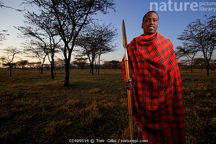 Maasai man with spear, Mara region, Kenya, September 2013.  ,  PEOPLE,AFRICAN DESCENT,NATIVE AFRICAN ETHNICITY,MASAI,MASAIS,MALE,MAN,AFRICA,EAST AFRICA,KENYA,VERTICAL,WIDE ANGLE,EQUIPMENT,WEAPONRY,WEAPON,WEAPONS,SPEAR,SPEARS,CLOTHING,TRADITIONAL CLOTHING,LANDSCAPE,LANDSCAPES,OUTDOORS,OPEN AIR,OUTSIDE,CULTURE,INDIGENOUS CULTURE,TRIBES,MASAAI  ,  Tom  Gilks