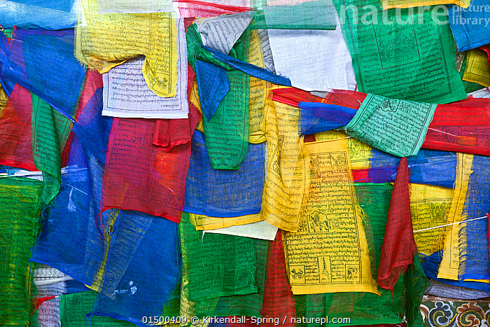 Prayer flags covering the side of Kuendeying Bazzam Bridge over the Wang Chhu in Thimphu. Bhutan, October 2014.  ,  high15,,,Colour,Yellow,Colourful,Colorful,Multi Coloured,Group,Large Group,Nobody,Asia,Indian Subcontinent,Bhutan,Thimphu,Full Frame,Close Up,Equipment,Religious Equipment,Prayer Flag,Prayer Flags,Outdoors,Open Air,Outside,Backgrounds,Background,Religion,Eastern Religion,Eastern Religions,Buddhism,Culture,Asian Culture,Large Group of Objects,Buddhist,Yellow Colour,  ,  Kirkendall-Spring