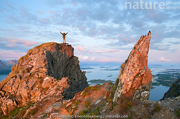 View from Mt Donnamannen and man standing on rock with arms raised, Helgeland, Nordland, Norway, July, 2009.  ,  Gesturing,Arms Raised,Leisure,Outdoor Pursuit,Climbing,Mountaineering,People,Adventure,Adventures,Adventurous,Celebration,Celebrate,Celebrating,Celebrations,Courage,Brave,Bravery,Daring,Europe,Northern Europe,North Europe,Nordic Countries,Scandinavia,Norway,Mountain,Landscape,Landscapes,Nordland  ,  Erlend  Haarberg