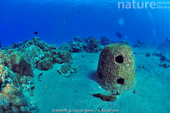 Concrete reef balls sunk to build an artificial reef, Philippines, Sulu Sea. August 2014.  ,  Asia,South East Asia,Republic of the Philippines,Tropical,Reef,Reefs,Coral Reef,Coral Reefs,Ocean,Pacific Ocean,Marine,Underwater,Water,Conservation,Indo Pacific,Saltwater,Sea,Biodiversity hotspots,Biodiversity hotspot,Tropics,Philippines,Nature taking over,Sulu Sea,Artificial Reef,Nature reclamation  ,  Pascal Kobeh