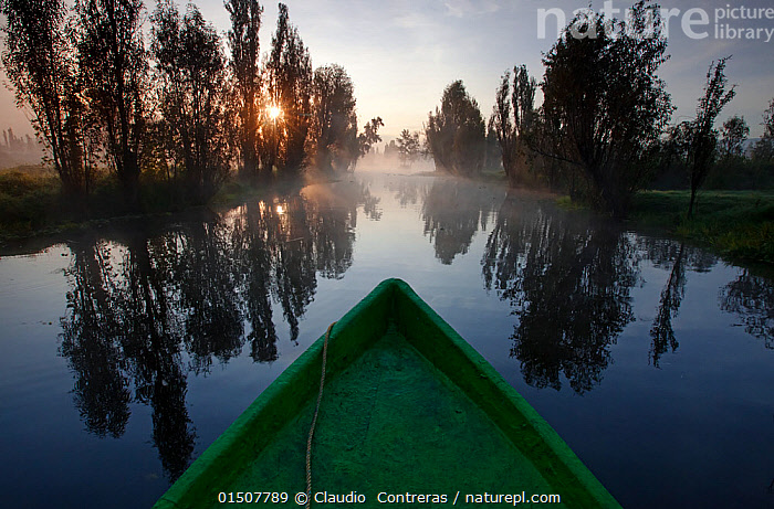 Boat on canal between chinampas, a wetland agricultural system. Xochimilco wetlands, Mexico City, September  ,  catalogue8,,,Atmospheric Mood,Atmospheric,Mood,Calm,Alone,Silence,Quiet,Solitude,Solitary,Symmetry,Nobody,Latin America,Central America,Mexico,Mexico City,Diminishing Perspective,Close Up,Back Lit,Backlit,Boat,Boats,Reflection,Canal,Canals,Waterway,Waterways,Mist,Outdoors,Open Air,Outside,Autumn,Autumnal,Fall,Freshwater,Wetland,Water Surface,Water,Silhouette,Boat Part,Bow,Dawn,Personal point of view,One Object,Beginnings,Personal POV,Xochimilco,  ,  Claudio  Contreras