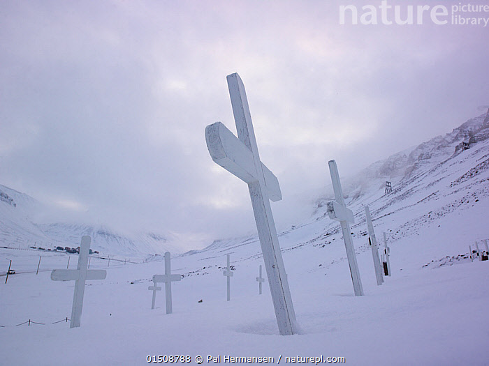Graveyard with white crosses half buried in snow, Svalbard, Norway. March.  ,  high15,,,Memories,Togetherness,Close,Together,Colour,White,Group,Medium Group,Nobody,Temperature,Cold,Europe,Northern Europe,North Europe,Nordic Countries,Scandinavia,Norway,Svalbard,Symbol,Spiritual Symbol,Cross,Cemetery,Hill,Hills,Hillside,Hillsides,Sky,Cloud,Snow,Outdoors,Open Air,Outside,Winter,Day,Religion,Christianity,Death,White colour,Medium Group of Objects,  ,  Pal Hermansen