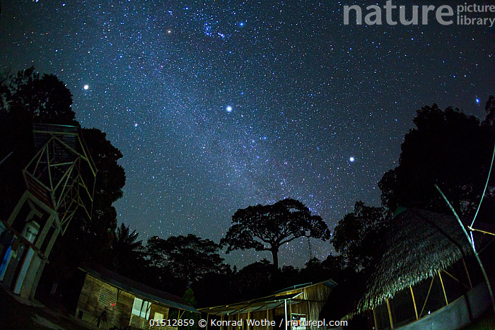 Starry night sky over the scientific research station in Panguana Reserve, Huanuca province, Amazon basin, Peru.  ,  high15,,,Research,Researching,Nobody,Latin America,South America,Peru,Low Angle View,Back Lit,Backlit,Plant,Treetop,Treetops,Tree,Building,Building Exterior,Outer Space,The Universe,Galaxy,Galaxies,Stars,Sky,Outdoors,Open Air,Outside,Night,Science,Rainforest,Tropical rainforest,Reserve,Forest,Silhouette,Protected area,Amazon,Starry,Milky Way,  ,  Konrad  Wothe