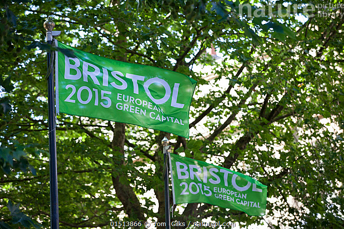 Flags for Bristol European Green Captial 2015, Bristol, England, UK. August 2015.  ,  Colour,Green,Europe,Western Europe,UK,Great Britain,England,Bristol,Plant,Tree,Flag,City,Environment,Environmental Issues,Green issues,Green colour  ,  Tom  Gilks