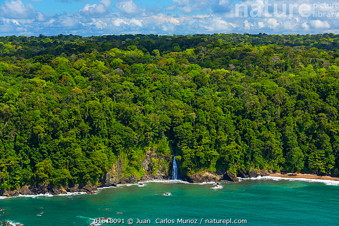 Aerial view of waterfall on the coastline of Corcovado National Park, Osa Peninsula, Puntarenas Province, Costa Rica. December 2014.  ,  high15,,,Scale,Proportion,Nobody,Latin America,Central America,Costa Rica,Aerial View,High Angle View,Horizon,Coastlines,Flowing Water,Waterfall,Cascade,Cascades,Waterfalls,Outdoors,Open Air,Outside,Day,Coast,Rainforest,Mangrove,Tropical rainforest,Freshwater,Marine,Coastal Wetland,Coastal,Water,Reserve,Forest,Saltwater,Sea,Biodiversity hotspot,Protected area,National Park,View to land,Elevated view,Insignificant,Secluded,  ,  Juan  Carlos Munoz