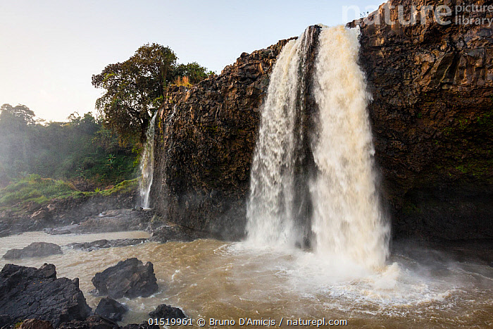 Tisisat Falls / Blue Nile Falls along the Blue Nile, south of Bahir Dar, Lake Tana Biosphere Reserve, Ethiopia. December 2013.  ,  Africa,East Africa,Ethiopia,Cliff,Flowing Water,Waterfall,Cascade,Cascades,Waterfalls,River,Landscape,Landscapes,Nature,Natural,Natural World,Power In Nature,Power,Powerful,Freshwater,Water,Reserve,Protected area,Lake Tana  ,  Bruno D'Amicis