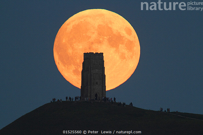 Super moon rising behind Glastonbury Tor with people watching, Somerset, England, UK, 27th September 2015.  ,  catalogue8,,,People,Magic,Magical,Colour,Yellow,Group,Luminosity,Glow,Glows,Size,Large,Big,Shape,Shapes,Circle,Europe,Western Europe,UK,Great Britain,England,Somerset,Back Lit,Backlit,Building,Historic Building,Historic Buildings,Historical Building,Historical Buildings,Castle,Castles,Hill,Hills,Hillside,Hillsides,Moon,Full Moon,Sky,Outdoors,Open Air,Outside,Night,Silhouette,Moonrise,Yellow Colour,Hilltop,Super Moon,  ,  Peter  Lewis