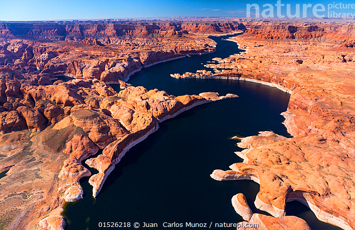 Aerial view of Lake Powell, near Page, Arizona and the Utah border, USA, February 2015. Lake Powell is a reservoir on the Colorado River, and is the second largest man made lake in the USA.  ,  American,North America,USA,Western USA,Southwest US,Utah,Arizona,Aerial View,High Angle View,Desert,Deserts,Landscape,Landscapes,Freshwater,Lake,Water,Elevated view,American,  ,  Juan  Carlos Munoz
