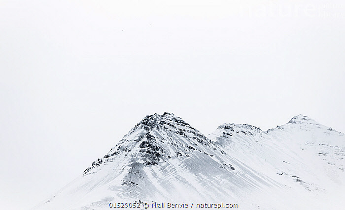Icelandic skyline, mountain ridge covered in snow, South Iceland, October 2013., Europe,Northern Europe,North Europe,Nordic Countries,Scandinavia,Iceland,Copy Space,Skyline,Skylines,Mountain,Summit,Snow,Negative space,, Niall Benvie
