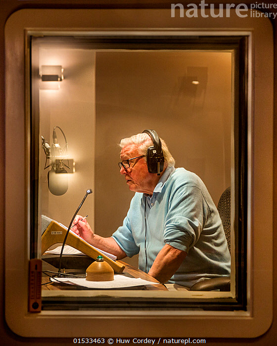 Sir David Attenborough recording voice over for BBC series, The Hunt. September 2015., Recording,People,Man,Celebrity,Celebrities,Vip,Vips,Vertical,Equipment,, Huw Cordey