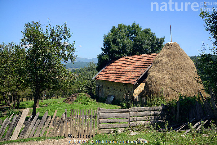 Traditional cottage and haystack in mountain village, near Foca, Bosnia and Herzegovina, July 2014.  ,  Traditional,Europe,Southern Europe,Bosnia And Herzegovina,Hay,Haystack,Haystacks,Building,Residential Structure,House,Houses,Cottage,Cottages,Farmhouse,Farmhouses,Landscape,Landscapes,Countryside,Reserve,Protected area,National Park,  ,  Nick Upton