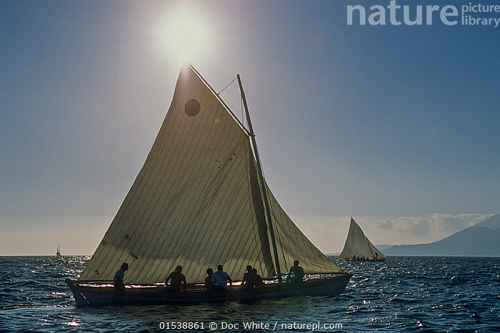 Small whaling boat on calm water, Azores Islands, Portugal  ,  Profile,Side View,Boat,Boats,Sailboat,Sail Boat,Sail Boats,Sailboats,Sailing Boat,Sailing Boats,Light,Lights,Sunlight,Environment,Environmental Issues,Atlantic Islands,Azores,Whale hunting,  ,  Doc White