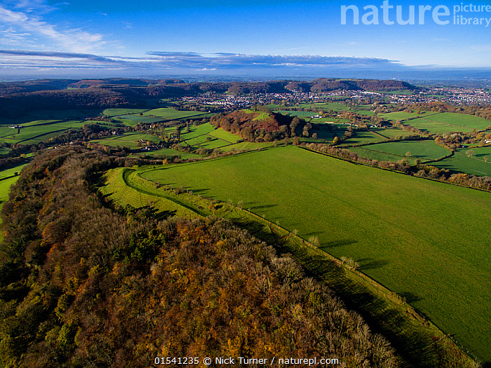 Uley Bury iron-age hill fort on Cotswold escarpment, defensive ditches still visible. Gloucestershire, UK.  Aerial drone with CAA permit. November 2015.  ,  Flat,Sloping,Europe,Western Europe,UK,Great Britain,England,Gloucestershire,Cotswolds,Aerial View,High Angle View,Building,Military Building,Fortification,Fortifications,Fortress,Fortresses,Fort,Forts,Landscape,Landscapes,History,Woodland,Forest,Elevated view,The Past,Escarpment,Iron Age,Hill Fort,Cotswolds AONB,  ,  Nick Turner