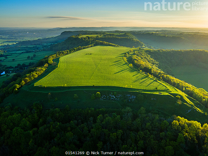 Uley Bury Iron Age Hill Fort, Uley, Gloucestershire, UK. May 2016.  ,  Flat,Europe,Western Europe,UK,Great Britain,England,Gloucestershire,Cotswolds,High Angle View,Building,Military Building,Fortification,Fortifications,Fortress,Fortresses,Fort,Forts,Light,Lights,Sunlight,Landscape,Landscapes,Woodland,Forest,Plateau,Elevated view,Expansive,Hill Fort,Cotswolds AONB,  ,  Nick Turner