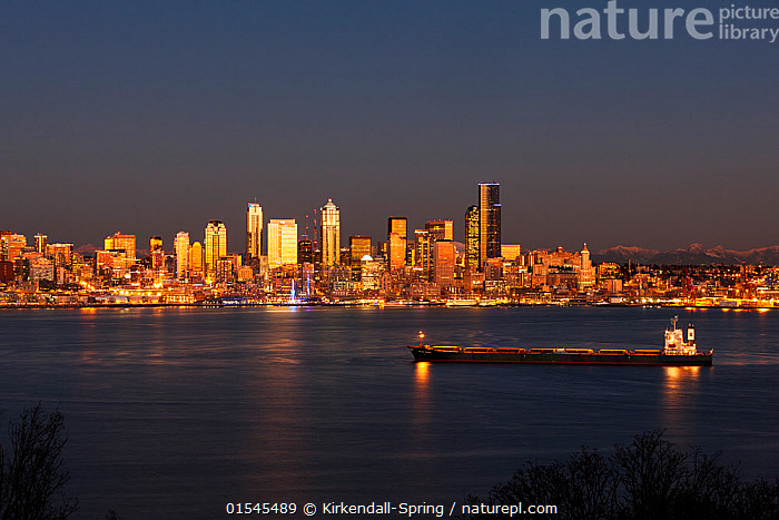 Seattle sklyine from Hamilton Viewpoint Park in West Seattle, Washington, USA. January 2016., American,North America,USA,Western USA,Washington,Seattle,Copy Space,Downtown District,Central Business District,Central Business Districts,Downtown,Downtown Area,Downtown Districts,City,Skyline,Skylines,Building,Building Exterior,Boat,Boats,Open Space,Open Spaces,Scenery,View,Views,Vista,Marine,Water,Saltwater,Sea,Negative space,American,United States of America,, Kirkendall-Spring