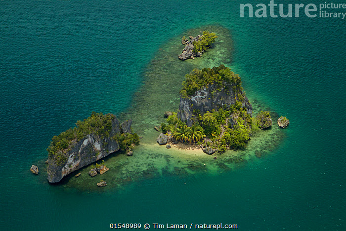 Islets and peninsulas of Northern Kabui Bay, Waigeo Island., Oceania,Melanesia,New Guinea,Aerial View,High Angle View,Tropical,Island,Islands,Ocean,Pacific Ocean,Landscape,Coast,Rainforest,Tropical rainforest,Marine,Coastal,Water,Forest,Saltwater,Elevated view,, Tim  Laman