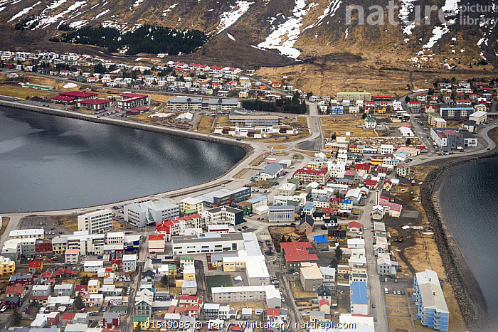 Aerial view of Isafjordur, Westfjords, Iceland. April  ,  Europe,Northern Europe,North Europe,Nordic Countries,Scandinavia,Iceland,Horizontal,Aerial View,High Angle View,Settlement,Harbour,Town,Towns,Building,Mountain,Fjord,Fjords,Landscape,Coast,Marine,Coastal waters,Coastal,Water,Saltwater,Sea,Elevated view,Port,  ,  Terry  Whittaker