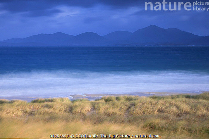 View across Sound of Taransay to North Harris hills in stormy weather , West Harris, Outer Hebrides, Scotland, UK, September 2014.  ,  Plant,Vascular plant,Flowering plant,Monocot,Grass,Beachgrass,Marram grass,Plantae,Plant,Tracheophyta,Vascular plant,Magnoliopsida,Flowering plant,Angiosperm,Seed plant,Spermatophyte,Spermatophytina,Angiospermae,Poales,Monocot,Monocotyledon,Lilianae,Poaceae,Grass,True grass,Gramineae,Ammophila,Beachgrass,Beach grass,Ammophila arenaria,Marram grass,European marram grass,European beachgrass,Arundo arenaria,Ammophila arundinaceae,Phalaris maritima,Europe,Western Europe,UK,Great Britain,Scotland,Outer Hebrides,Photographic Effect,Long Exposure,Sand Dune,Mountain,Ocean,Atlantic Ocean,Weather,Storm,Landscape,Coast,Marine,Coastal,Water,Bad Weather,Arty shots,Saltwater,Sea,Hebrides,Severe weather,Scottish islands,Scottish isles,SCOTLAND: The Big Picture,Pete Cairns,Plants,Angiosperms,Spermatophytes,Monocots,Monocotyledons,Grasses,True grasses,Beachgrasses,Beach grasses,Dunes,Mountainous,Mountains,Landscapes,Coasts,Oceans,Seas,Plant,Vascular plant,Flowering plant,Monocot,Grass,Beachgrass,Marram grass,high16  ,  SCOTLAND: The Big Picture