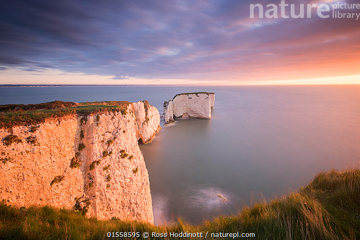 RF - Old Harry Rocks, colourful sunrise looking towards the Isle of Wight, Studland, Dorset, UK. September . (This image may be licensed either as rights managed or royalty free.)  ,  Morning,Mornings,Nobody,Europe,Western Europe,UK,Great Britain,England,Dorset,Cliff,Rock,Limestone,Chalk,Sunrise,Outdoors,Day,Coast,Marine,Coastal,Water,Saltwater,Sea,Dawn,View to sea,Isle of Purbeck,RF,Royalty free,RFCAT1,RF17Q1,Old Harry Rocks,  ,  Ross Hoddinott