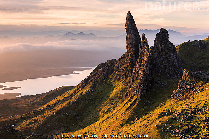 RF - The Old Man of Storr, situated on the Trotternish peninsula of the Isle of Skye, Scotland, UK. Early morning light. November . (This image may be licensed either as rights managed or royalty free.)  ,  Morning,Mornings,Nobody,Steep,Europe,Western Europe,UK,Great Britain,Scotland,Rock Formations,Sunlight,Mist,Landscape,Outdoors,Day,Geology,Hebrides,Inner Hebrides,Skye,Scottish islands,Scottish isles,Isle of Skye,Natural Light,RF,Royalty free,RFCAT1,RF17Q1,Trotternish,  ,  Ross Hoddinott