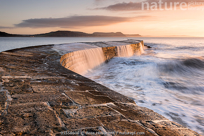 RF - The Cobb, breakwater, Lyne Regis, Dorset, UK. January 2016. (This image may be licensed either as rights managed or royalty free.)  ,  Nobody,Europe,Western Europe,UK,Great Britain,England,Dorset,Diminishing Perspective,Photographic Effect,Blurred Motion,Blurred Movement,Harbour,Infrastructure,Water Management Infrastructure,Breakwater,Breakwaters,Groynes,Ocean,Outdoors,Winter,Twilight,Evening,Day,Coast,Marine,Coastal,Water,Saltwater,Sea,Dusk,View to sea,Harbour Wall,RF,Royalty free,RFCAT1,RF17Q1,Lyme Regis,,,Dorset and East Devon Coast, UNESCO World Heritage Site,  ,  Ross Hoddinott
