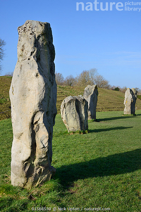 Neolithic megaliths, Avebury Stone Circle, Wiltshire, UK, February 2014.  ,  Europe,Western Europe,UK,Great Britain,England,Wiltshire,Monument,Monuments,Megalithic Monument,Megalithic Monuments,Standing Stone,Standing Stones,Landscape,History,Prehistoric,The Past,Neolithic,  ,  Nick Upton