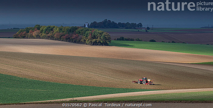 Tractor ploughing field, Pleine Selve, Picardy, France, October 2016.  ,  bleak,,,,Ploughing,Europe,Western Europe,France,Picardy,Equipment,Agricultural Equipment,Agricultural Machinery,Agricultural Machine,Agricultural Machines,Machine,Machines,Plow,Plough,Ploughs,Plows,Cultivated Land,Landscape,Countryside,Farmland,Picardie,  ,  Pascal  Tordeux