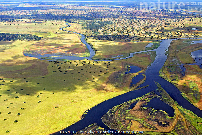Aerial view of Bangweulu Marshes, Zambia, April 2006., Africa,East Africa,Zambia,Aerial View,High Angle View,Landscape,Wetland,Marsh,Marshland,Elevated view,, Sylvain Cordier