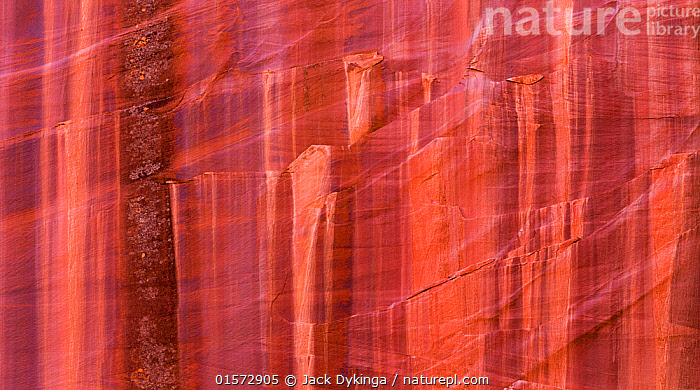 Patterns in sandstone cliffs in Grand Staircase-Escalante National Monument, Utah, USA, October 2014.  ,  American,Colour,Orange,Dry,Arid,Pattern,North America,USA,Western USA,Southwest US,Utah,Close Up,Cliff,Desert,Rock,Sandstone,Reserve,Protected area,National Monument,American,United States of America  ,  Jack Dykinga