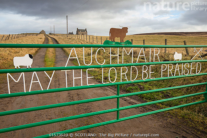 Religious message on farm gate with croft in background, Aberdeenshire, Scotland, UK, January 2017  ,  Traditional,Europe,Western Europe,UK,Great Britain,Scotland,Grampian,Animal,Information,Boundary,Fence,Gate,Gates,Gateway,Gateways,Farms,Road,Building,Residential Structure,House,Houses,Farmhouse,Farmhouses,Entrance,Sky,Moody Sky,Weather,Overcast,Agriculture,Livestock,Religion,Countryside,Domestic animal,Cattle,Domestic Sheep,Domesticated,Ovis aries,Aberdeenshire,Dark skies,Sheep,Mammal,SCOTLAND: The Big Picture,Pete Cairns,Track,  ,  SCOTLAND: The Big Picture