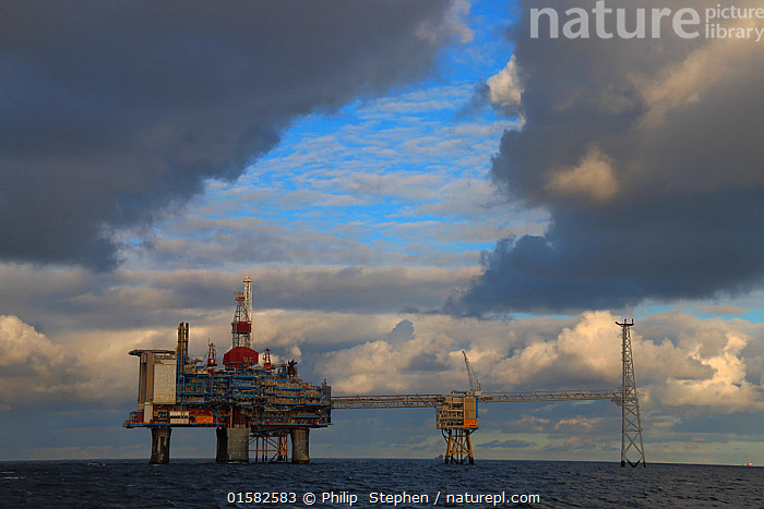 Nature Picture Library - 'Sleipner' production platform on the North