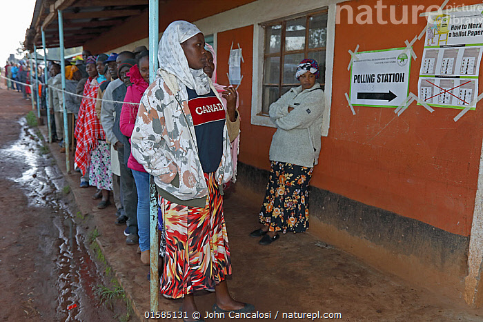 People queuing to vote during Kenyan election,  near Kitale Kenya, August 8 2017.  ,  Waiting,Waiting In Line,In Line,Queue,Queueing,Queues,Queuing,People,African Descent,Democracy,Democratic,Political Event,Election,Campaign,Campaigning,Africa,East Africa,Kenya,Local people,  ,  John Cancalosi