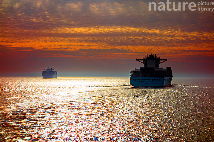 Two container ships / cargo vessels sailing at sunset, North Sea  ,  Boat,Industrial Ship,Cargo Ship,Freighter,Container Ship,Container Ships,Freighters,Sunset,Setting Sun,Sunsets,Marine,Water,Working-boats,Saltwater,Sea,Dusk,North Sea,  ,  Philippe Clement
