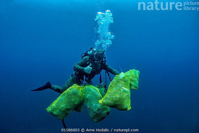 Scuba diver removing plastic marine litter from the sea bed.  Mljet National Park, Mljet  Island, Croatia. May 2015. Model released.  ,  Cleaning,Waste,Europe,Southern Europe,Croatia,Man Made Material,Plastic,Plastics,Environment,Environmental Issues,Environmental Damage,Underwater,Water,Conservation,Littering,Marine Pollution,,, catalogue11  ,  Arne Hodalic
