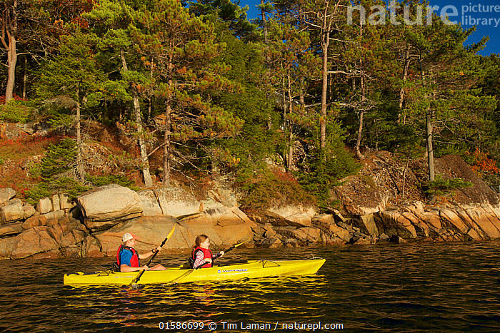 Boy and girl kayaking, Acadia National Park, Maine, USA. October 2013. Model released., Acadia National Park,Mount Desert Island,,American,People,Child,Teenager,Adventure,North America,USA,Eastern USA,New England,Maine,Plant,Tree,Sport,Sports,Water Sport,Kayaking,Water,Forest,Acadia National Park,American,United States of America,Young,Young Person,,, catalogue11, Tim  Laman