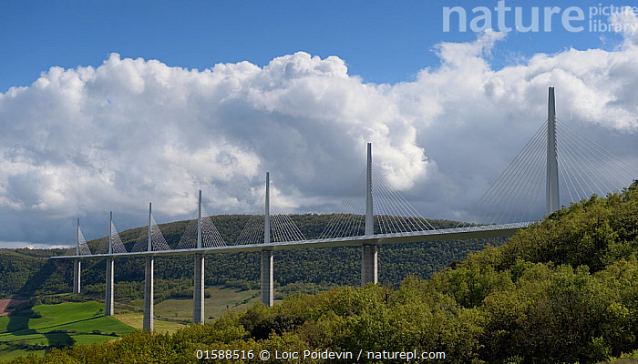 Millau Viaduct, Tarn Valley, Aveyron, France, May., Europe,Western Europe,France,Building,Bridge,Bridges,Viaduct,Viaducts,Sky,Cloud,Landscape,,, catalogue11, Loic Poidevin
