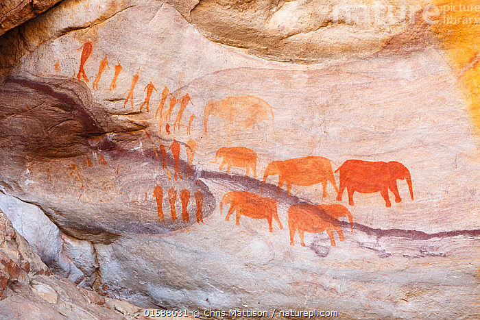 San rock-art paintings of elephants and people, Cederberg Wilderness, South Africa, Africa,Southern Africa,South Africa,Art,Cave Painting,Cave Paintings,Animals in art,Animals-in-art,Cave art,Cave drawings,Rock art,South African,Rock Painting,, Chris Mattison