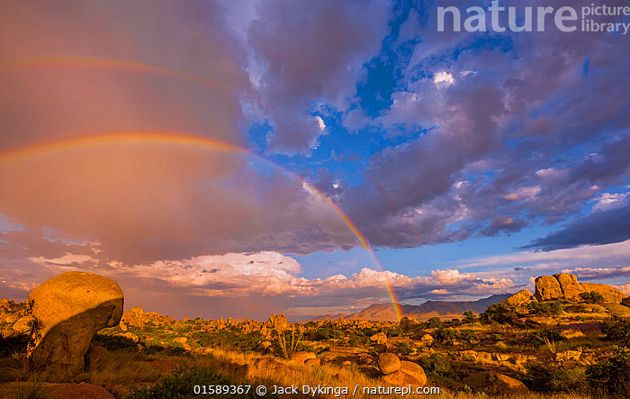 Storm clouds and rainbow over the boulders in Texas Canyon, Dragoon Mountains, Chihuahuan Desert, Arizona, USA, September 2017., American,North America,USA,Western USA,Southwest USA,Arizona,Desert,Spectrum,Rainbow,Rainbows,Rock,Boulder,Boulders,Sky,Cloud,Weather,Storm,Bad Weather,Severe weather,American,United States of America,,, catalogue11, Jack Dykinga