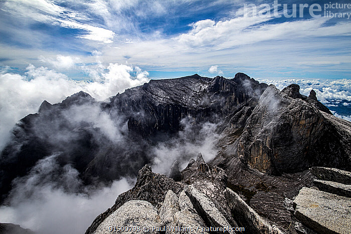 Clouds rolling into Low's Gully, as seen from the summit of Mount Kinabalu,  (4,095m) Borneo, May 2013., Asia,South East Asia,Mountain,Summit,Sky,Cloud,Landscape,Borneo island,Borneo,Sabah,Mount Kinabalu,, Paul Williams