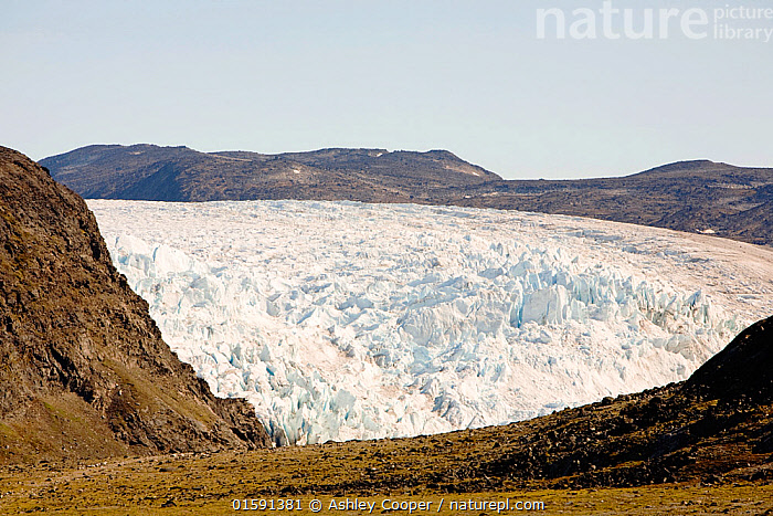 Nature Picture Library - Glacier coming off the Greenland ice sheet