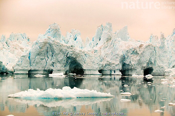 Icebergs from the Jacobshavn glacier or Sermeq Kujalleq, Greenland. July 2008.  ,  Greenland,icesheet,ice sheet,inland ice,ice sea,frozen,cold,north,Arctic,glacier,glaciation,weather,climate,global warming,climate change,melt,melting,melt water,meltwater,summer,sea level rise,meteorology,study,science,ancient,remote,challenge,ice surface,surface melting,warming,temperature,rising temperature,affect,liqued,positive feedback,Greenland ice sheet,interior,blue,sky,warm,sun,sunny,heat,energy,thermal,thermodynamics,albedo,reflection,suns energy,surface,Jacobshavn glacier,jacobshavn isbrae,ice fjord,Sermeq Kujatdleq,Sermeq Kujalleq,glacier speed,largest,ice berg,iceberg,Ilulissat,massive,huge,big,large,cave,ice cave,,,,  ,  Ashley Cooper